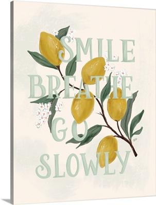 Smile Breathe Go Slowly