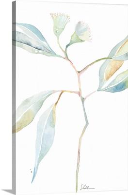 Watercolor Botanical IV