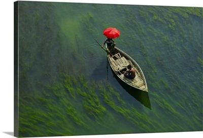 A Boat Man Crossing River With Full Of Algae, Sirajganj, Bangladesh