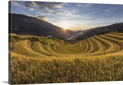 A pattern of rice terraces at sunset, Mu Cang Chai Yen Bai Province, Vietnam
