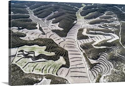 Aerial View Of Drylands Farming. Castejon De Monegros, Huesca, Aragon, Spain
