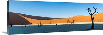 Africa, Namibia, Deadvlei, Namib desert, dead acacia trees