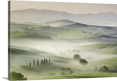 Agricultural Landscape In Fog, Italy, Tuscany, Siena, Val d'Orcia, San Quirico d'Orcia