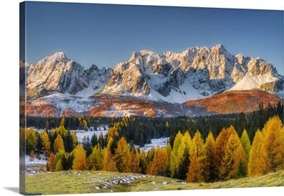 Alpine Pasture Nemes Against Sextner Dolomites, South Tyrol, Alto Adige, Italy, Europe