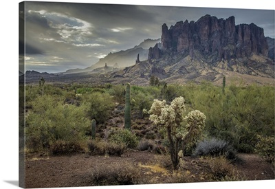 Arizona, Southwest, Apache Junction, Lost Dutchman State Park, Superstition Mountains