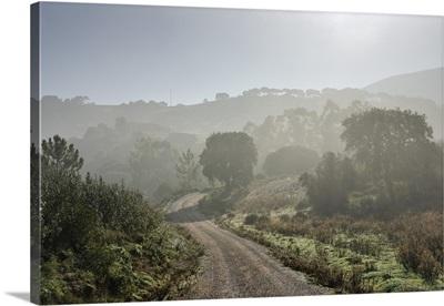 Arrabida Natural Park in a misty morning, Portugal