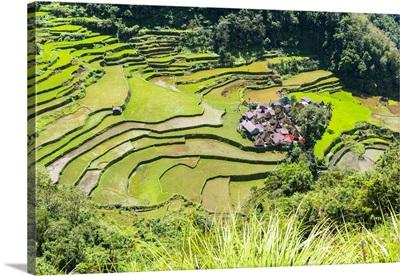 Asia, South East Asia, Philippines, Luzon, Bangaan