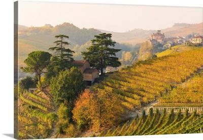 Barolo, Cuneo Province, Piedmont, Italy