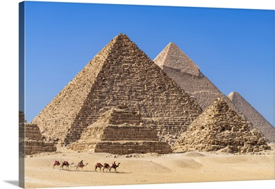Camel Train At The Pyramids Of Giza, Giza, Cairo, Egypt