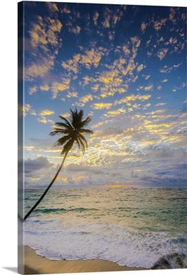 Caribbean, Barbados, Bottom Bay, Bottom Bay Beach