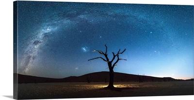 Deadvlei, Namib-Naukluft National Park, Namibia, Africa. Dead Acacia Trees At Night.