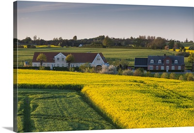 Denmark, Funen, Hindsholm Peninsula, Viby, elevated view of farm