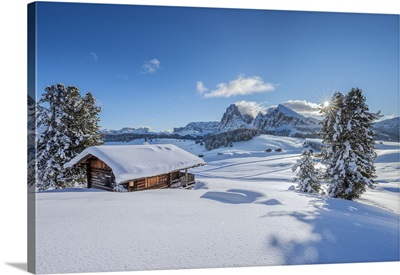 Dolomites, South Tyrol, Italy, Seiser Alm With The Peaks Of Langkofel And Plattkofel