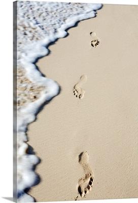 Dominican Republic, Punta Cana, Bavaro, footprints in the sand