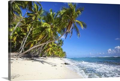 Dominican Republic, Samana Peninsula, Playa Fronton