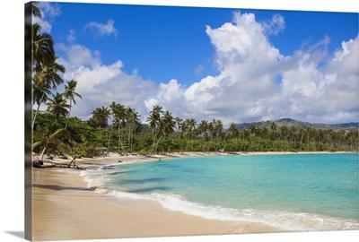 Dominican Republic, Samana Peninsula, Playa Rincon