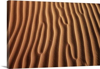 Dune Landscape In Rub Al-Khali, Oman, Dhofar, Ramlat Al Hashman, Rub Al-Khali