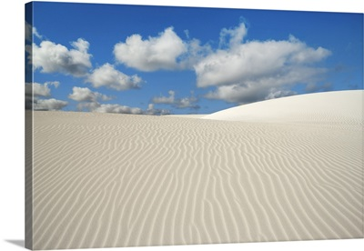 Dune Landscape Near Cervantes, Australia, Midwest, Nambung National Park