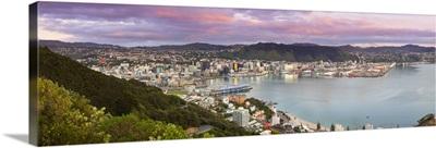 Elevated view over central Wellington illuminated at sunrise, Wellington, New Zealand
