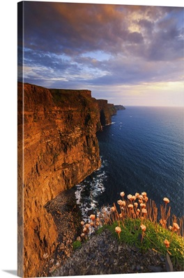 Europe, Ireland, Clare county, Cliffs of Moher at sunset