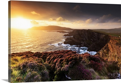 Europe, Spectacular Kerry cliffs at sunset along the Ring of Kerry