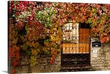 France, Midi-Pyrenees Region, Tarn Department, gate with autumn foliage