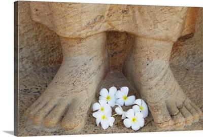 Frangipani flowers at feet of statue of Parakramabahu, Polonnaruwa, Sri Lanka