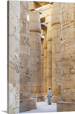 Guardian At The Karnak Temple, Luxor, Egypt, Africa