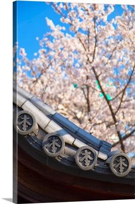 Ichinomiya Shrine, Kobe, Kansai, Japan