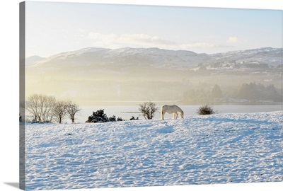 Ireland, County Donegal, Milford, snow covered landscape