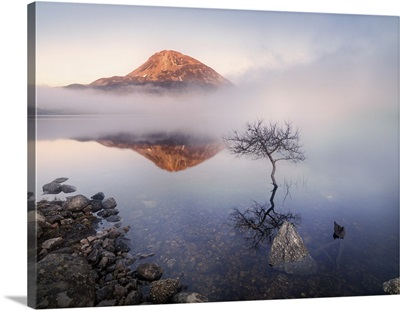 Ireland, County Donegal, Mount Errigal reflected in Lough Dunlewey