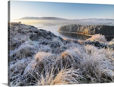 Ireland, County Donegal, Mulroy bay, winter landscape
