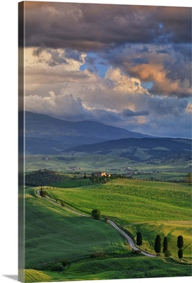 Italy, Tuscany, Siena district, Orcia Valley, country road near Pienza