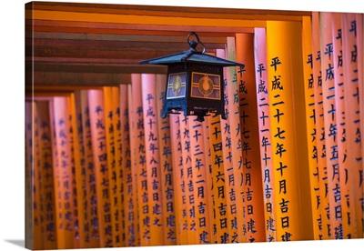 Japan, Kyoto, Fushimi Inari Shrine, vermilion torii gates