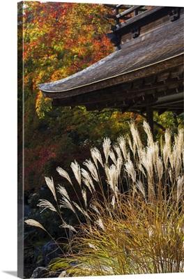 Japan, Kyoto, Ginkakuji Temple, A World Heritage Site