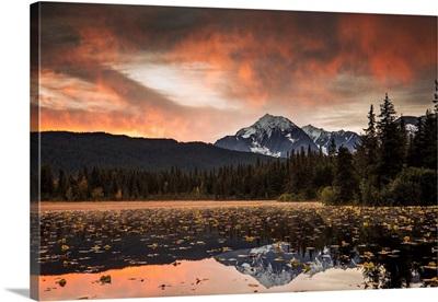 Kenai Peninsula, Alaska, United States Of America