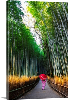 Kyoto, Japan, Woman In Traditional Kimono Walking In The Bamboo Grove At Sunrise