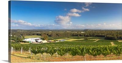 Lakes Folly Wine Estate, Hunter Valley, New South Wales, Australia