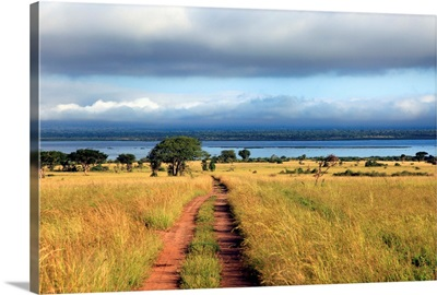 Landscape, Murchison Falls national park, Uganda, East Africa