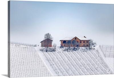 Langhe, Cuneo District, Piedmont, Italy. Langhe Wine Region Winter Snow, Fontanafredda