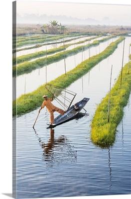 Leg-rowing fisherman of Inle Lake, Shan State, Myanmar