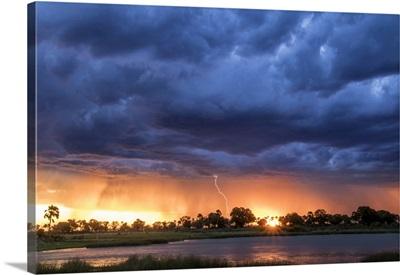Lightning Shoots From A Summer Thunderstorm, Okavango Delta, Botswana