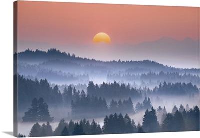 Misty Mood In Alpine Upland, Germany, Bavaria, Garmisch-Partenkirchen, Schonberg