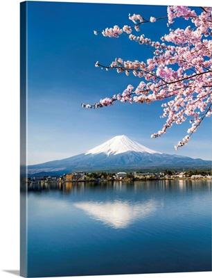 Mount Fuji seen from Lake Kawaguchiko during cherry blossom season, Japan