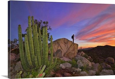 Mountains near La Ventanaz, Baja California, Mexico