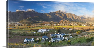 Mullineux and Leeu Family Wines Estate, Franschhoek, Western Cape, South Africa