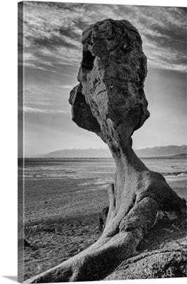 Mushroom Rock, Death Valley National Park, California, Usa