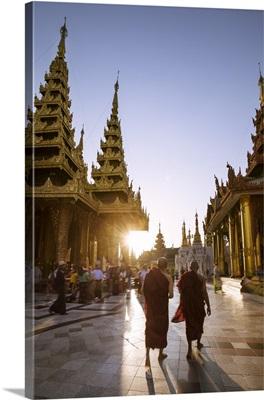 Myanmar, Yangon. buddhist monks walking inside Shwedagon pagoda complex