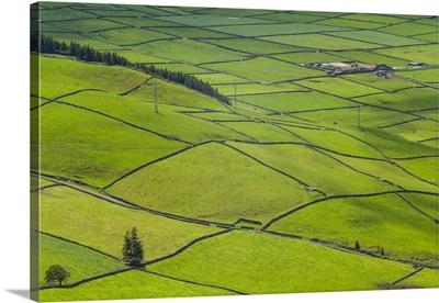 Portugal, Azores, Terceira Island, Serra do Cume of fields, springtime