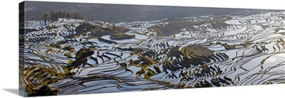 Reflections off water filled rice terraces, Yuanyang County, China